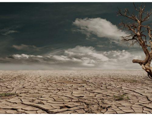 Los Ayuntamientos de Algarrobo y Cañete la Real, encargan a QyP Consultores los Planes Municipales contra el Cambio Climático