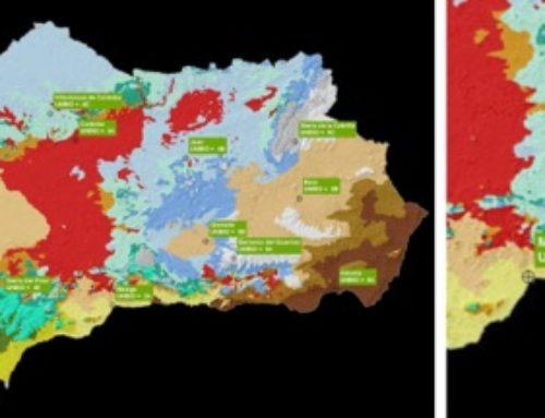 Plan Municipal contra el Cambio Climático de Algarrobo